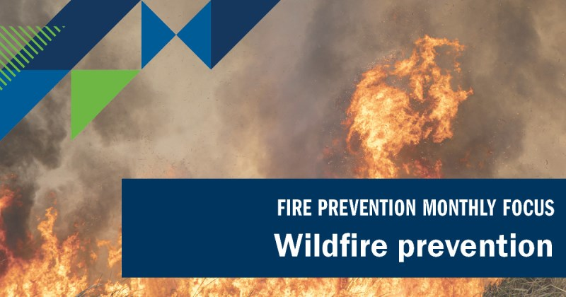 """Image of wildfire with text reading """"Fire prevention monthly focus: wildfire prevention"""""""